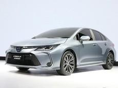 Toyota Corolla Altis 2019 sẽ về Việt Nam trong tương lai chính thức trình làng