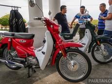 WMoto Cub Classic 2019 ra mắt nhằm cạnh tranh Honda Cub, giá 25,7 triệu đồng