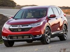 Nể phục khách hàng Việt kiên nhẫn chờ Honda CR-V tới 9 tháng trời