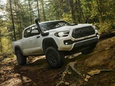 Xe bán tải nổi tiếng giữ giá Toyota Tacoma được bổ sung phiên bản 2020