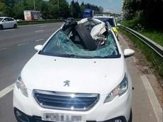 Lốp xe tải lăn tự do phá nát mui xe, tài xế thoát chết một cách thần kỳ