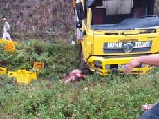 Hòa Bình: Chồng lái ô tô tải đâm xuống rãnh, vợ bị hất văng ra ngoài, tử vong tại chỗ
