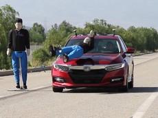 Toyota Camry và Honda Accord không có hệ thống phanh khẩn cấp tự động kèm phát hiện người đi bộ tốt như người ta tưởng