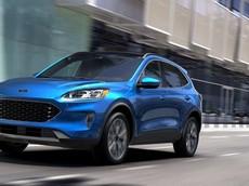 """Xem trước đội hình xe Ford chuẩn bị """"đổ bộ"""" Triển lãm Ô tô Việt Nam 2019, Ford Escape 2020 là nhân tố hút khách"""