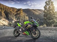 Kawasaki Z650 và Ninja 650 2020 phiên bản mới sẽ có mức giá tốt