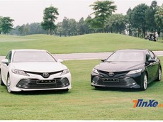 Lập kỷ lục doanh số trong năm 2019 nhưng Toyota Việt Nam vẫn kém TC Motor
