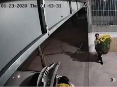 Đi xe ô tô nhưng người đàn ông này vẫn tiện tay bê trộm hai chậu hoa Tết