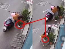 Video: Cô gái chạy xe tay ga quyết tâm lấy bằng được chậu cây cảnh dù đã gặp nạn