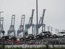 2.000 chiếc ô tô Nissan và Infiniti nằm lênh đênh trên biển vì cảng hết chỗ chứa