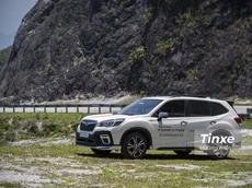 Subaru Forester: Giá xe Subaru Forester và khuyến mãi tháng 8/2020