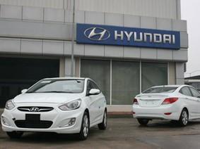Tạm dừng nhập khẩu xe ô tô Hyundai mới
