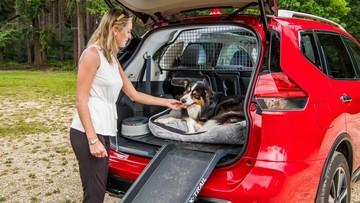 Nissan X-Trail tung Paw Pack dành tặng cún cưng
