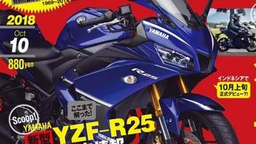 Yamaha R25 2019 chính thức ra mắt vào tháng 10 tại Nhật Bản
