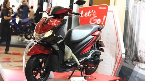 Hé lộ Yamaha FreeGo 2020, mẫu xe tay ga sở hữu màu mới, giá mới