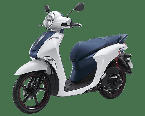 Mẫu Yamaha Janus màu trắng xanh