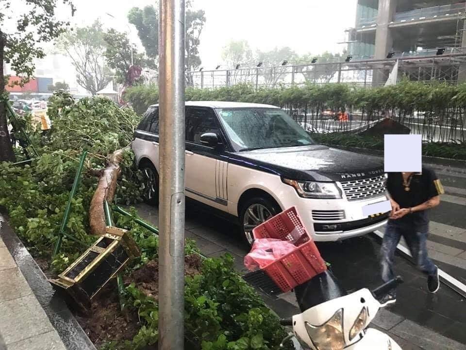 Đến cây xanh ngã cũng phải né xe sang tiền tỷ như Range Rover khiến cộng đồng mạng thích thú