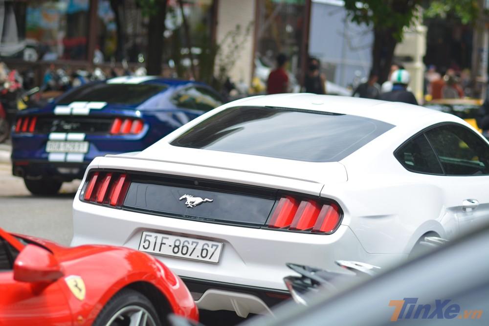 Và cuối cùng là cặp đôi Ford Mustang thế hệ thứ 6 mang màu sơn trắng và xanh