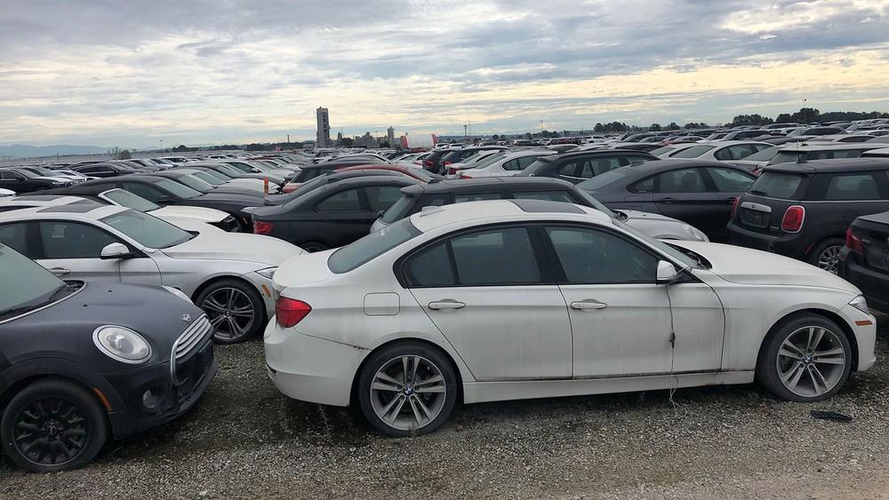 Những chiếc BMW và Mini xếp san sát trong bãi xe phế liệu tại Canada