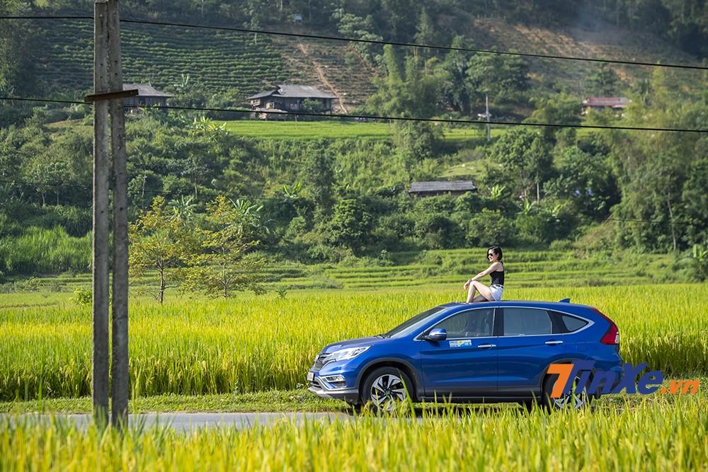Vào mùa này, các ruộng lúa vàng tràn ngập trên cung đường đi lên Tây Bắc.
