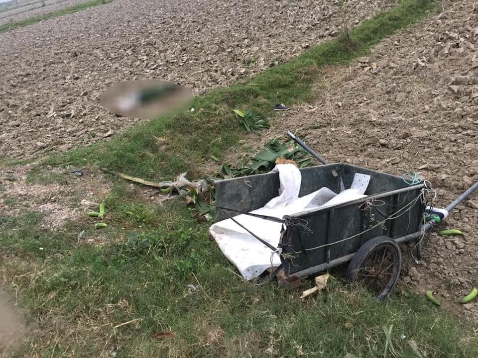 Chiếc xe lôi cũng nằm dưới ruộng lúa, gần thi thể nạn nhân