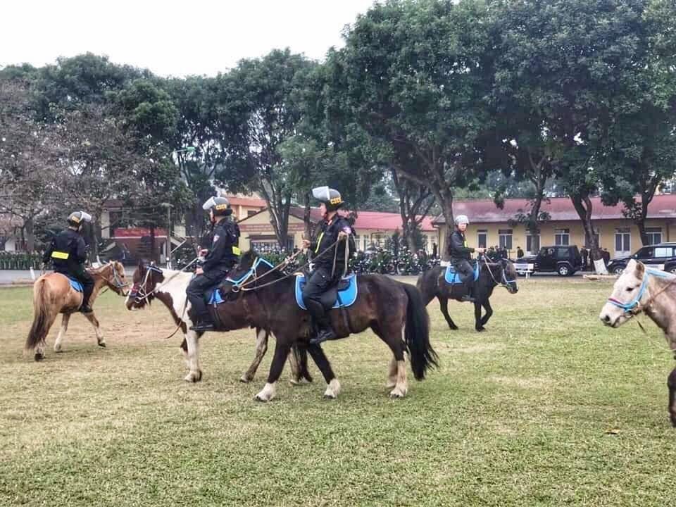 Lực lượng CSCĐ Kỵ binh diễu hành