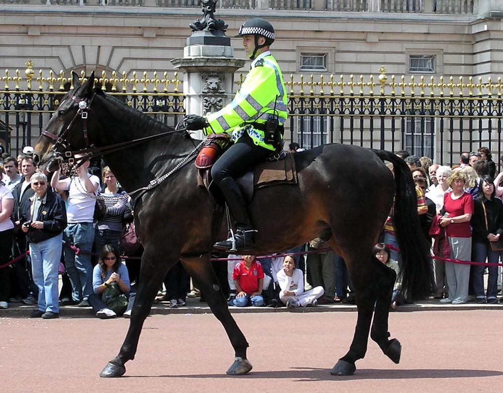 Kỵ binh cảnh sát Anh