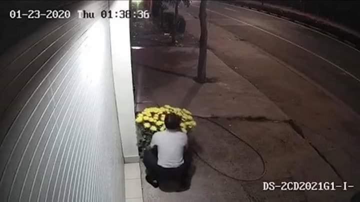 Người lái xe ô tô trộm đi hai chậu hoa cúc