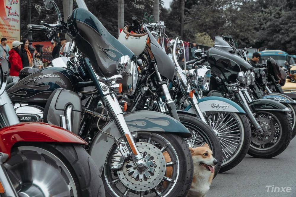 Dàn xe Harley của Vietgangz nổi bật giữa đám đông với phong cách độc đáo