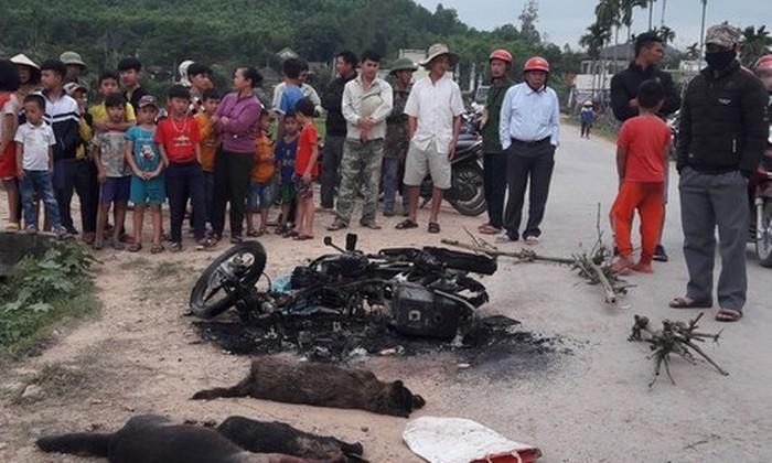 Hiện trường sự việc với 2 người bất tỉnh cùng với 3 con chó và 1 chiếc xe máy cháy rụi tại Nghệ An