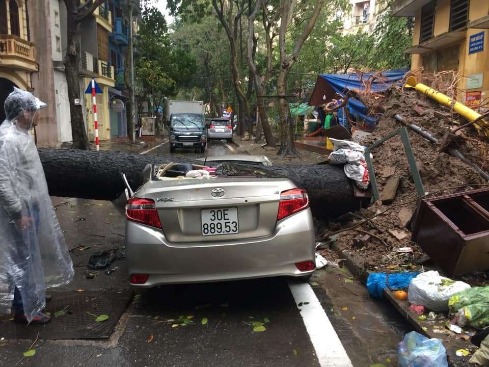 In Dinh Cong urban area, Hoang Mai, a large tree uprooted into the Toyota Vios-branded car on the roadside caused the entire cabin to be damaged, fortunately no human damage.