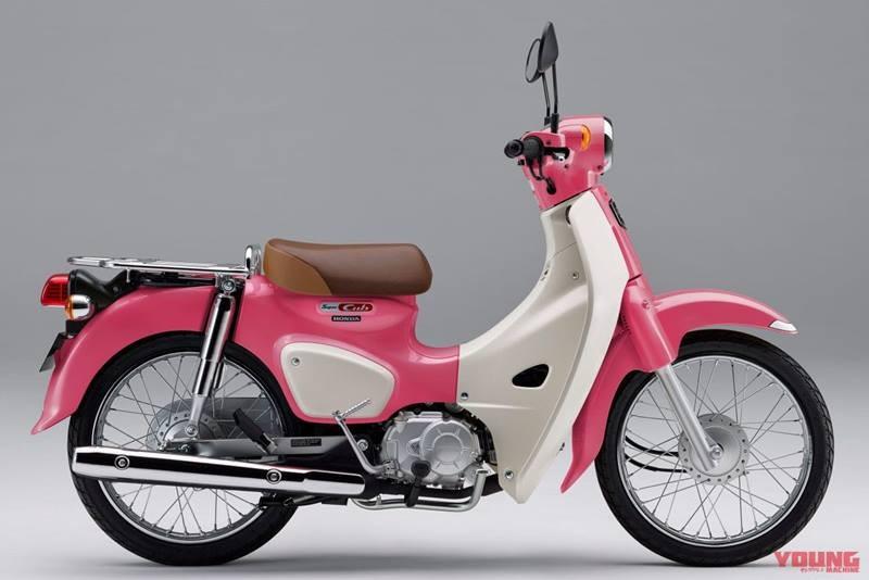 Honda Super Cub C125 có mức giá khá cao tại Việt Nam