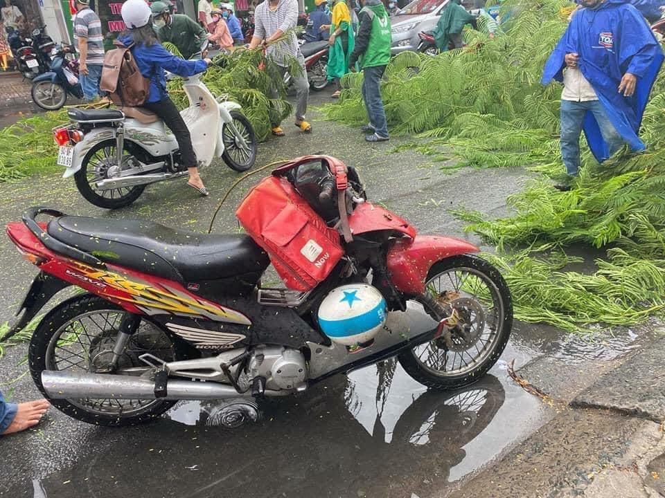 Chiếc xe máy của nạn nhân gãy gập sau khi bị cây đè