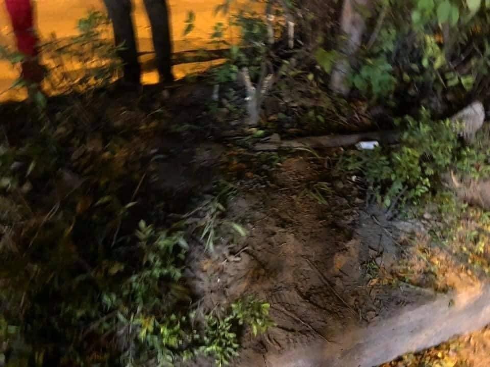 Khu vực bồn cây nơi chiếc xe máy vỉa trúng khi đang bốc đầu