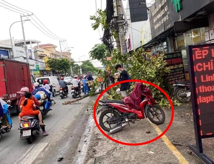 Một chiếc xe máy hư hỏng nằm cách xe gây tai nạn khoảng 10 mét