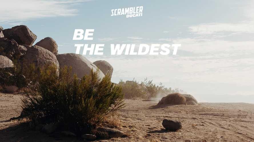 Poster của Ducati úp mở về một mẫu Scrambler mới