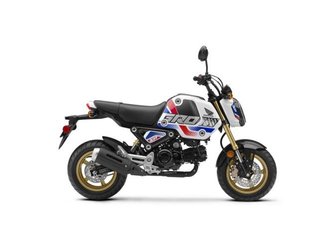 Bản màu đặc biệt trên Honda Grom 2022