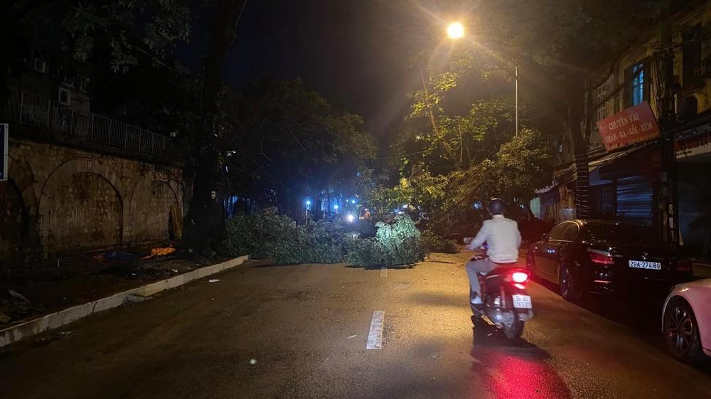 Cây đổ nằm chắn ngang đường trên phố Phùng Hưng