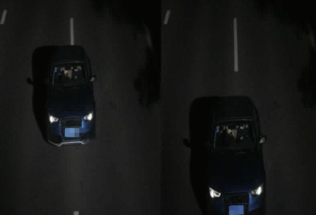 Anh Zhu và cô Lou lang thang trên đường để vi phạm giao thông bằng chiếc ô tô Audi