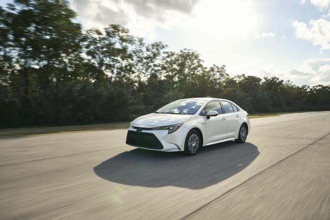 Toyota Corolla Hybrid có thiết kế gần như giống hệ với phiên bản sedan XSE từng được hé lộ mới đây