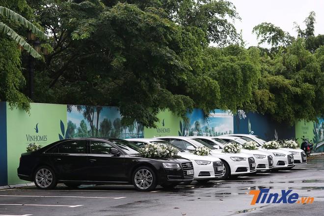 Dàn xe Audi trong đám cưới của Á hậu Dương Tú Anh