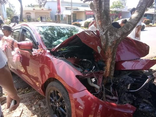 Gốc cây như chẻ đôi phần đầu của chiếc Mazda3