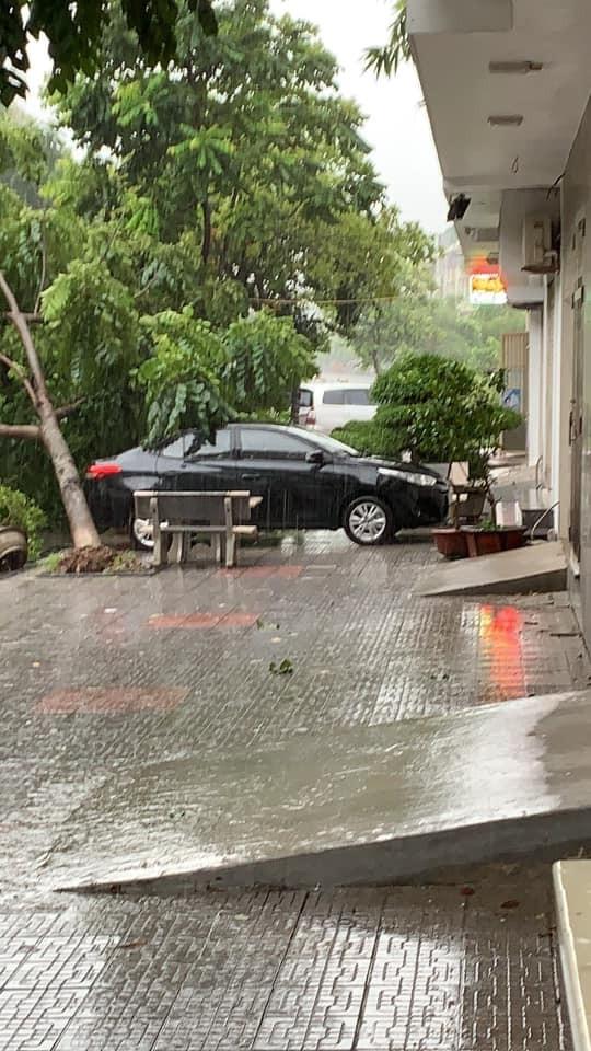 Cây đổ vào ô tô ở khu vực Văn Phú, quận Hà Đông, Hà Nội